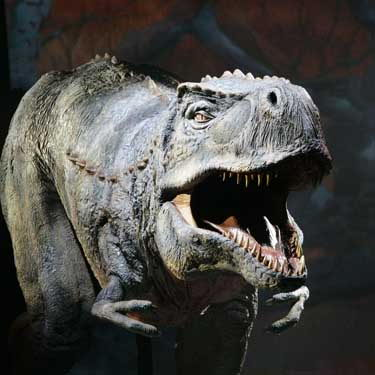 facts about dinosaurs for kids