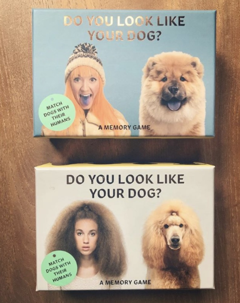 do you look like your dog