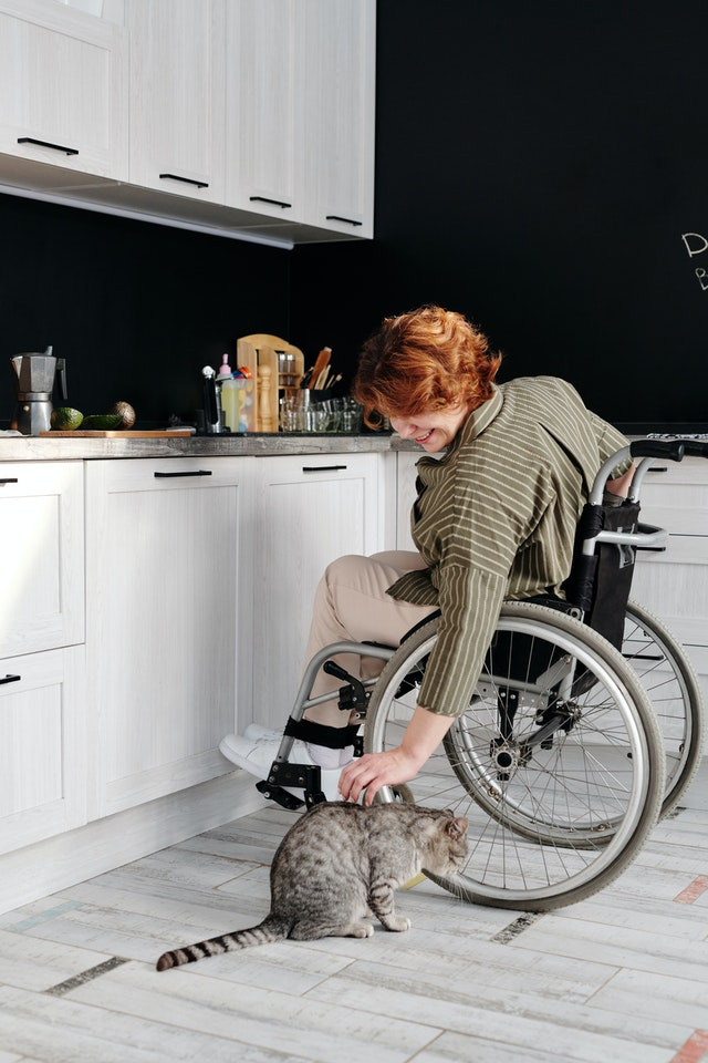 woman-sitting-on-wheelchair-while-touching-her-cat-4064423